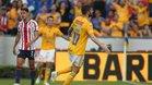 Gignac está a tres goles de convertirse en el máximo goleador de los Tigres