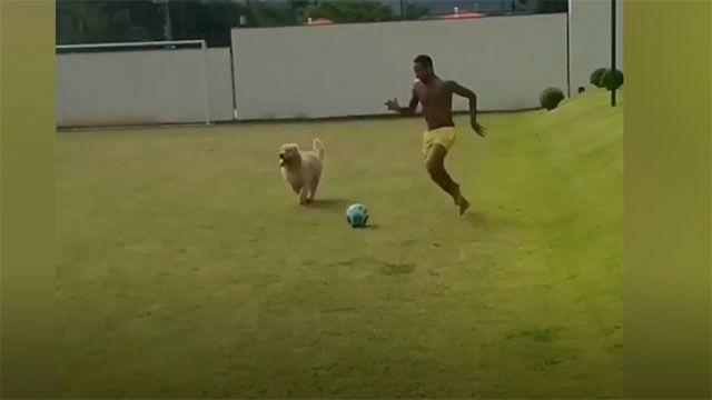 Neymar se divierte con sus perros durante el confinamiento